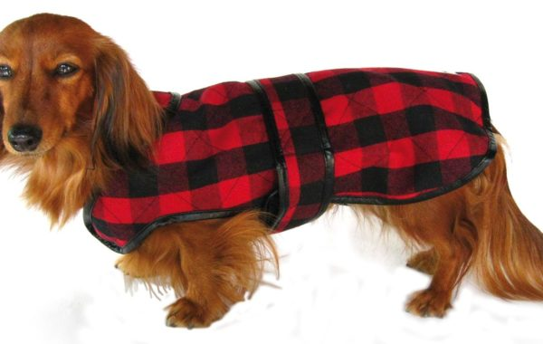 Woolrich Pet – Cappottino